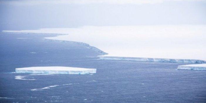 Bu adadaki canlılar tehlike altında, buzdağının çarpmasına az kaldı