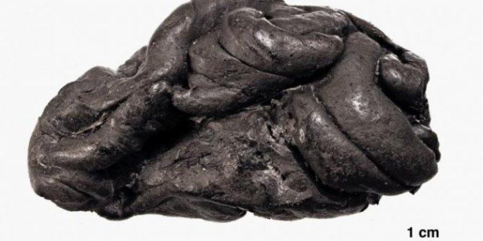 Sakız çiğneyen insanın 6 bin yıl sonra şeceresini çıkardılar
