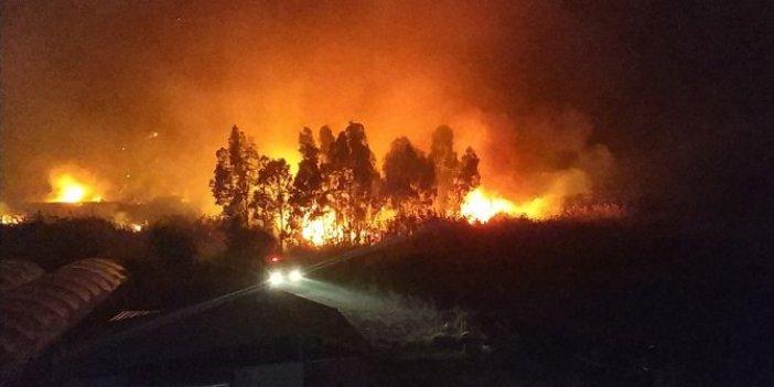 Muğla'daki yangında seraları olan çiftçiler seferber oldu