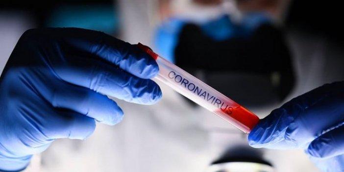 Daha bulaşıcı ve ölümcül olan virüs İspanya ve Kanada'ya da sıçradı