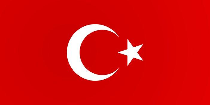 Türk bayrağına zarar veren şüpheli gözaltına alındı