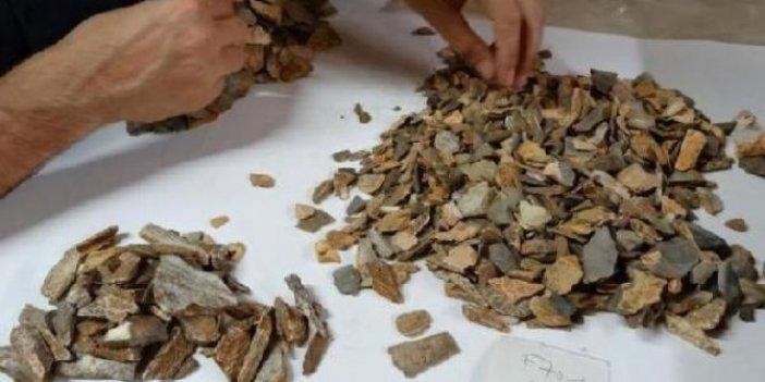 Fransa'daki arkeolojik kazıdan 41 bin yıllık tarih çıktı
