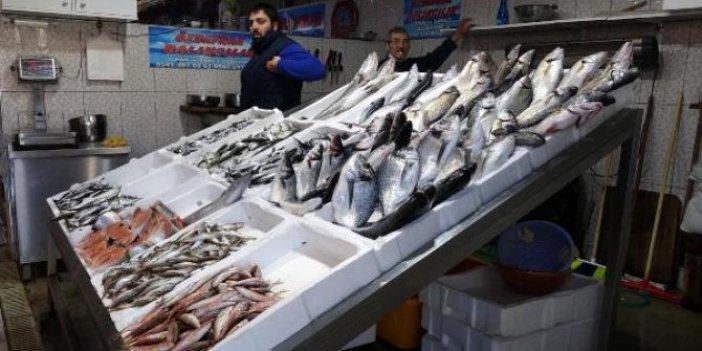 Hamsi fiyatları günden güne yükseliyor. Hamsi et fiyatıyla yarışıyor