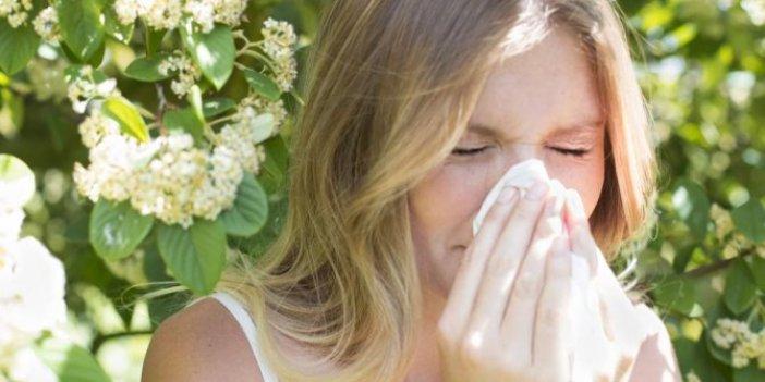 Uzman doktor doğal reçeteyi açıkladı. Herkesin muzdarip olduğu alerji için çözüm bulundu