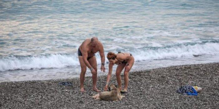 Yasaktan muaf olan turistler denize girdiler