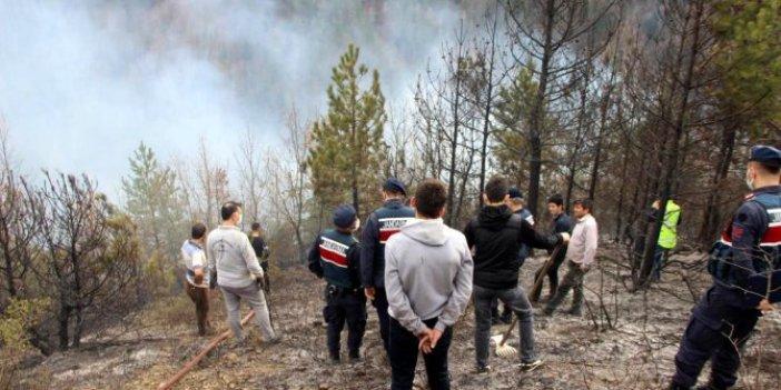 Kastamonu'da iki yerde orman yangını çıktı
