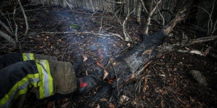 Bursa'da mangal nedeniyle çıktığı düşünülen yangın 10 dönümlük araziyi kül etti