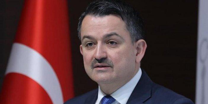 Tarım ve Orman Bakanı Bekir Pakdemirli'den flaş hamsi açıklaması. Yasak devam edecek mi