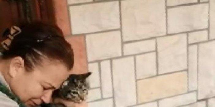 Adana'da vahşet. Kedisini veterinere götürdü. Döndüğünde hayatının şokunu yaşadı