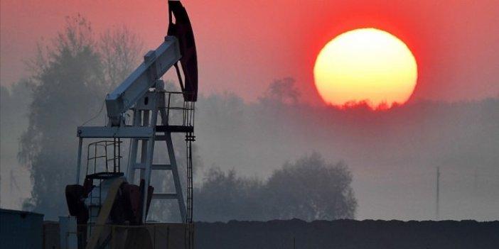 OPEC duyurdu. Küresel petrol talebi 2021'de günlük 5,9 milyon varil artacak