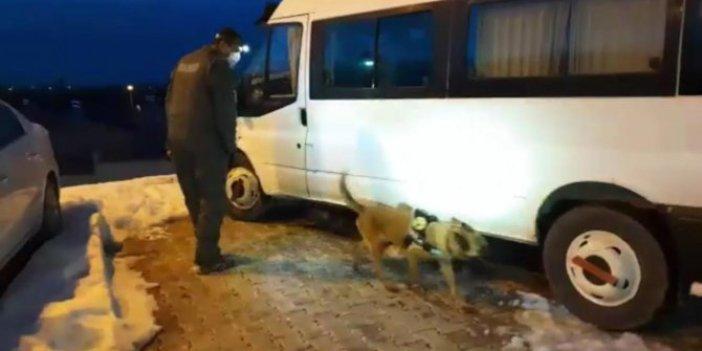 Van'da minibüste gizlenen eroini narkotik köpeği Şila buldu