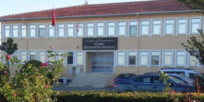Yeniçağ yazarı Murat Ağırel ortaya çıkardı. Zirai karantina binası Bilal Erdoğan'ın vakfına verildi