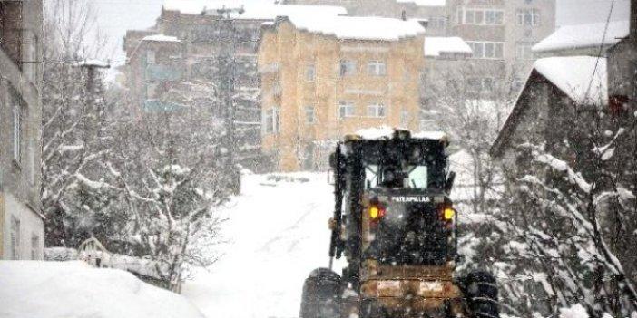 Zonguldak'ta ağaçlar çökünce maddi hasara sebep oldu