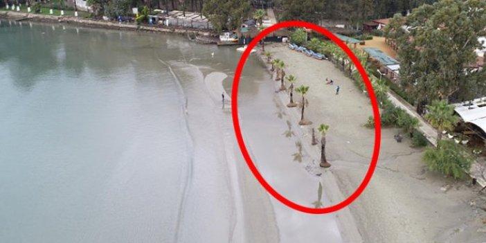 Sular 20 metre çekildi bölge halkı paniğe kapıldı. Gerçeği Türk profesör duyurdu