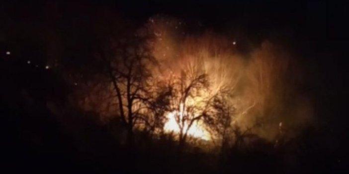 Fatsa'da ormanlık alanda yangın