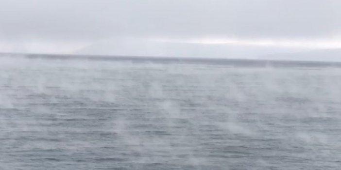 Ege'de sular ısındı neler oluyor. Pencereden bakıp denizin halini gören yazlıkçılar korku halinde