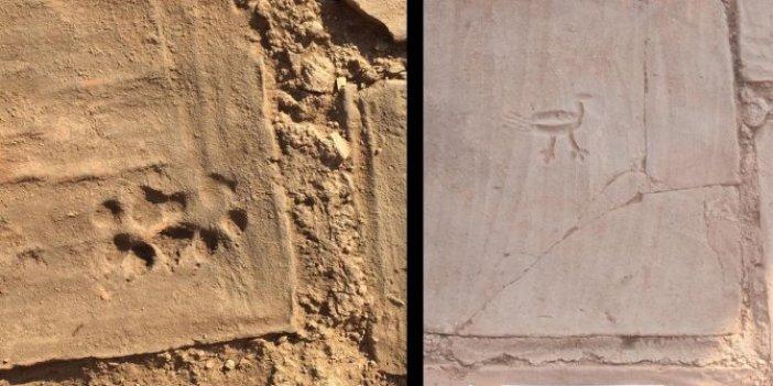 Manisa'da her kazma darbesinde ortaya çıktı. ABD'li arkeologlar gözlerine inanamadı