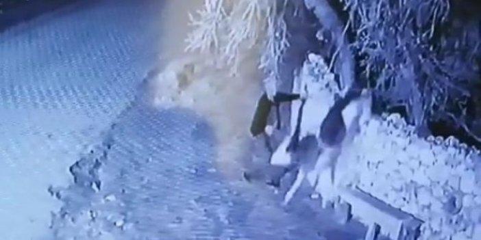 Buzağı hırsızlarına jandarmadan şok operasyon