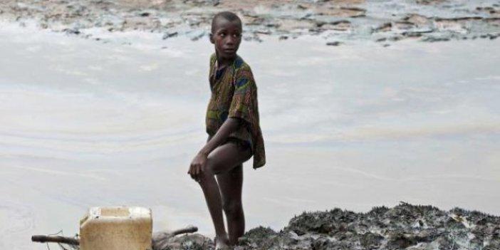 Shell, Nijerya'da tarım arazilerini kirlettiği çiftçilere tazminat ödeyecek