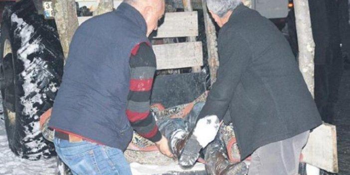 Ormanda esrarengiz 2 ceset bulundu