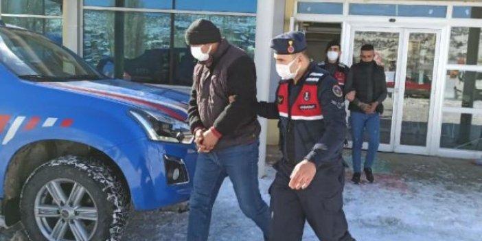 124 koyunu çalan hırsızlar tutuklandı