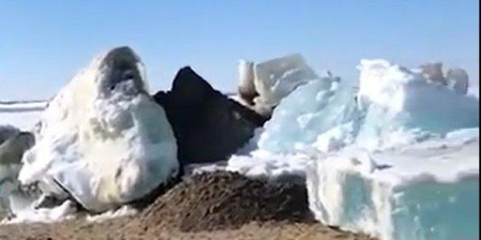 İnanması zor ama buzlar karaya çıkıp böyle yürüdü