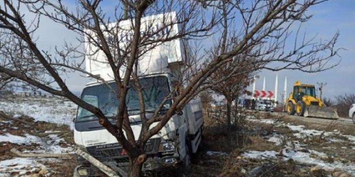 Malatya'da kontrolden çıkan kamyonet kayısı bahçesine daldı