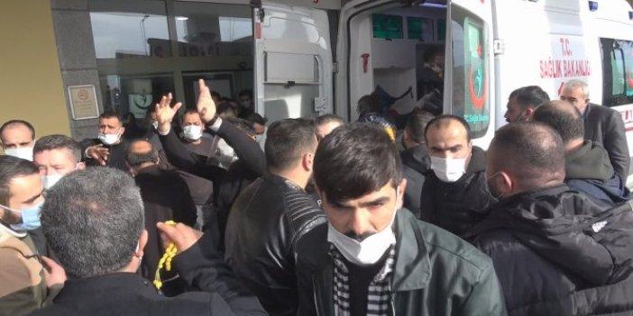 Arnavutköy'de korku dolu anlar. Çığlık sesini duyan yardımına koştu